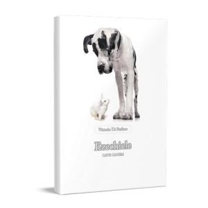 libri ebook gratis scarica epub vittoriolibri018